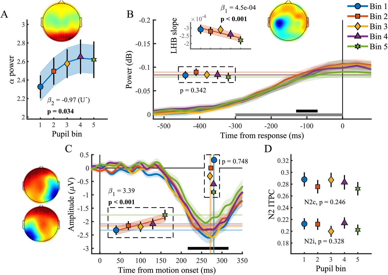 Behavioural and neural signatures of perceptual decision-making are on