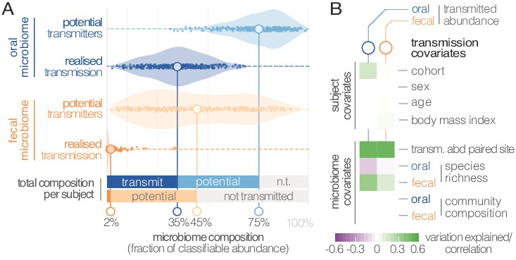 Extensive transmission of microbes along the