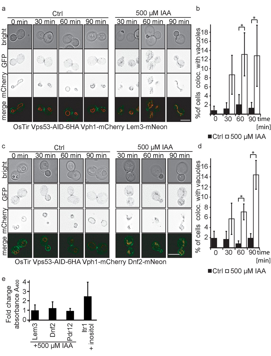 A systematic approach to identify recycling endocytic cargo