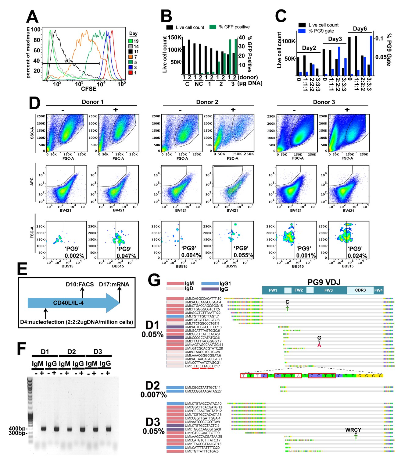 Reprogramming the antigen specificity of B cells using genome