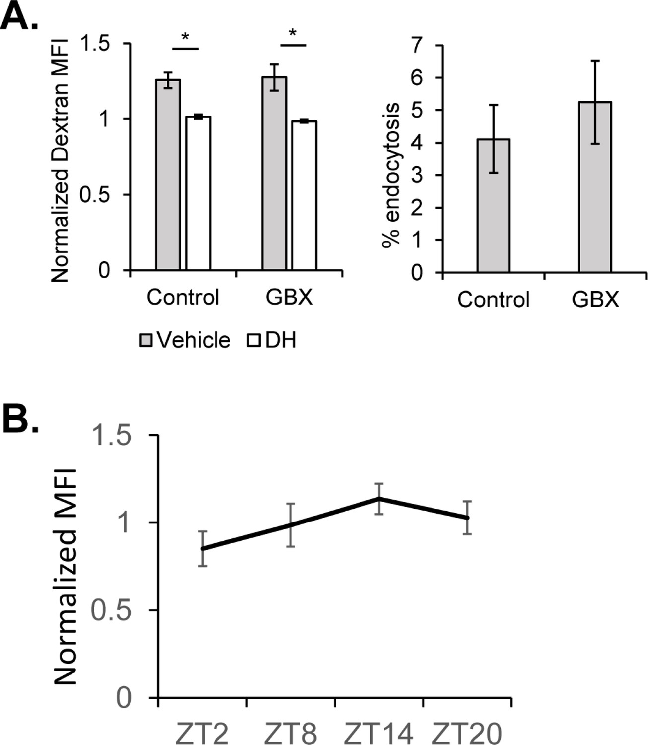 Endocytosis At The Drosophila Bloodbrain Barrier As A Function For Accessibility Find Equivalent Resistance Rab In Circuit Bbb Across Circadian Timepoints And Upon Gaboxadol Feeding Night Zt14