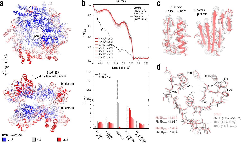Automated cryo-EM structure refinement using correlation