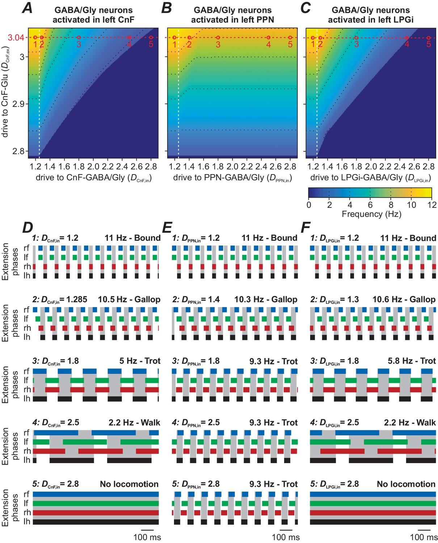 Computational modeling of brainstem circuits controlling