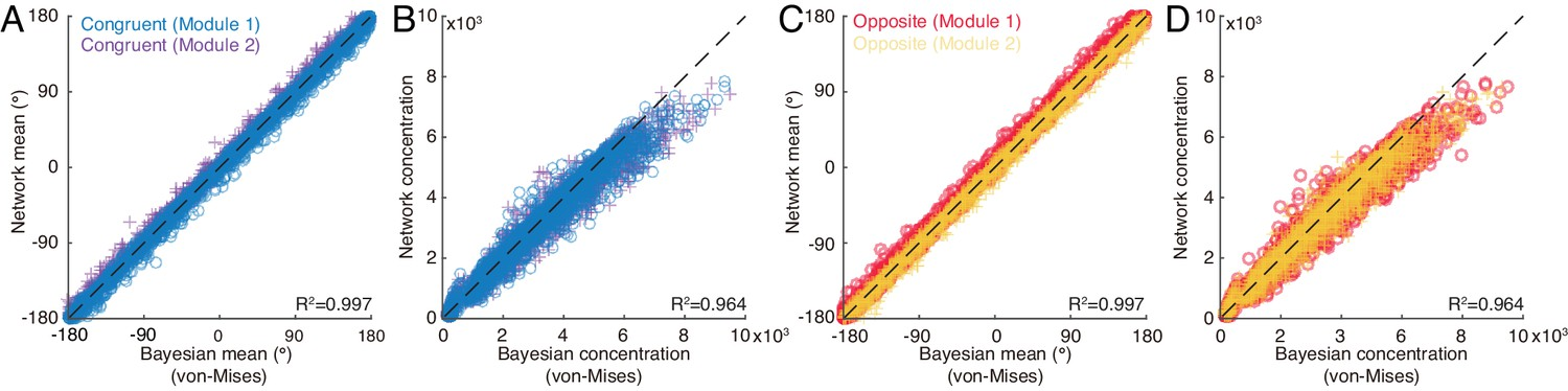 Complementary congruent and opposite neurons achieve concurrent
