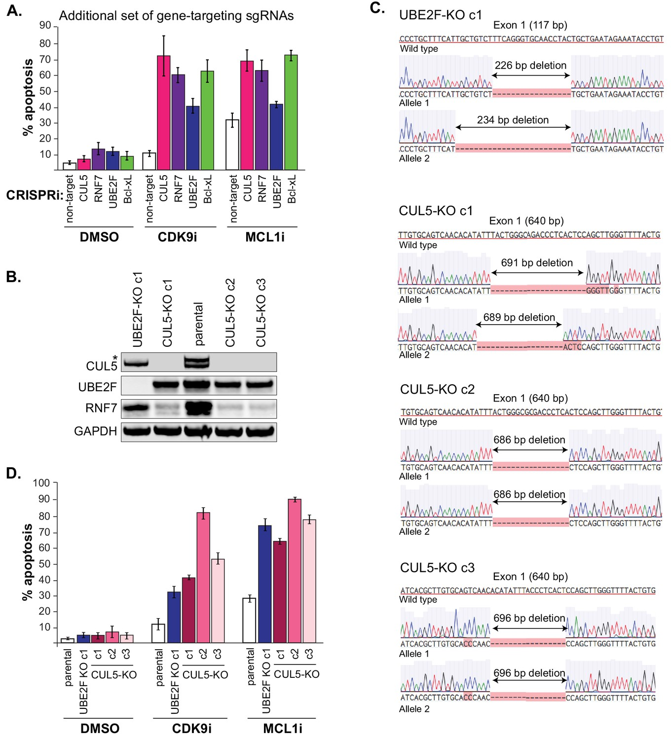 The CUL5 ubiquitin ligase complex mediates resistance to