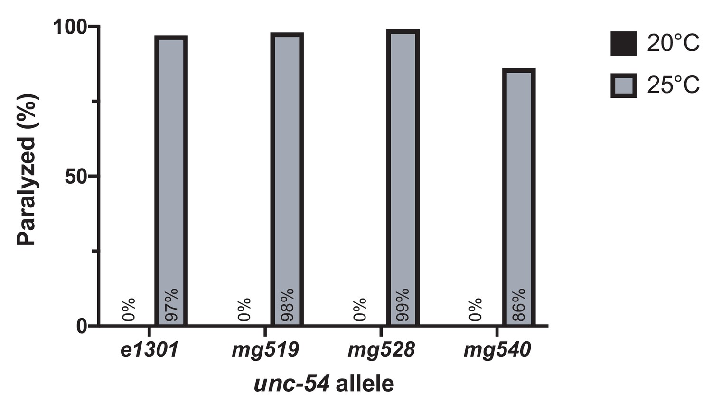Endoplasmic reticulum-associated SKN-1A/Nrf1 mediates a cytoplasmic