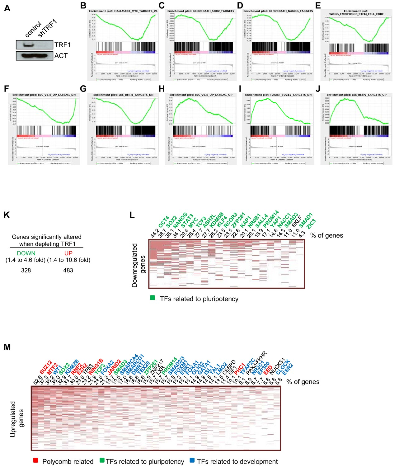 Figures and data in TERRA regulate the transcriptional