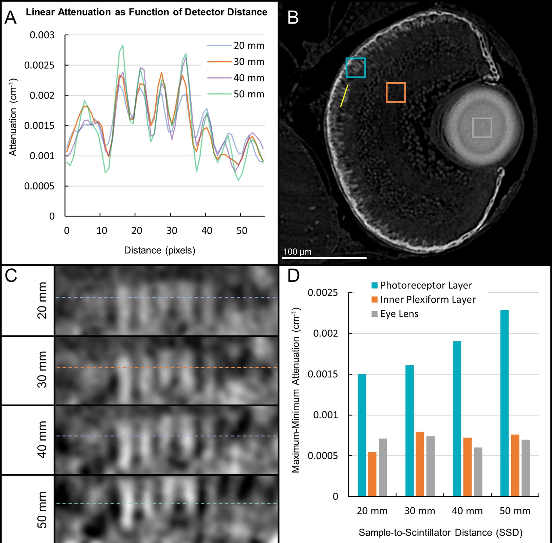 Computational 3D histological phenotyping of whole zebrafish