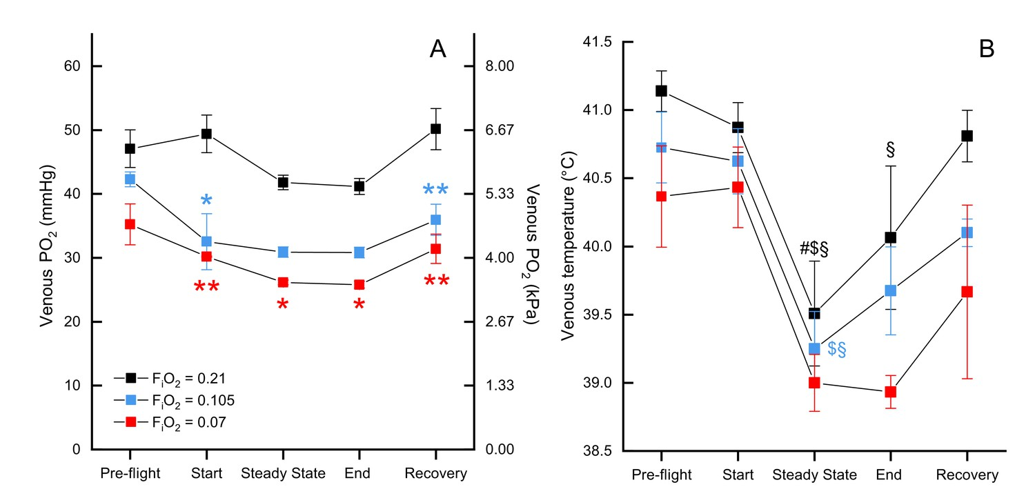 Reduced metabolism supports hypoxic flight in the high