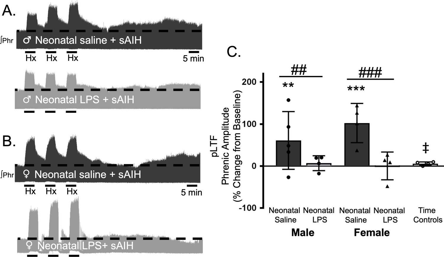 One bout of neonatal inflammation impairs adult respiratory