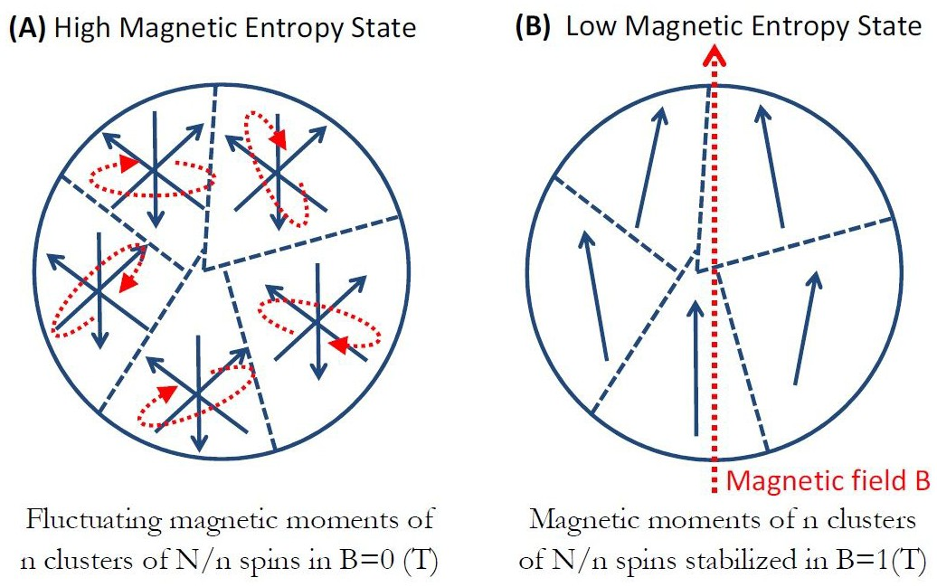 Possible magneto-mechanical and magneto-thermal mechanisms