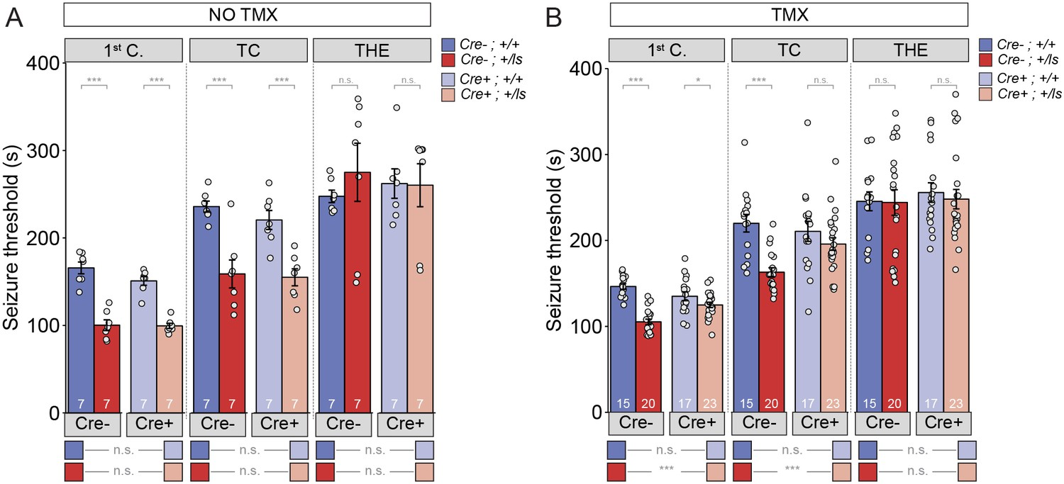 Re-expression of SynGAP protein in adulthood improves