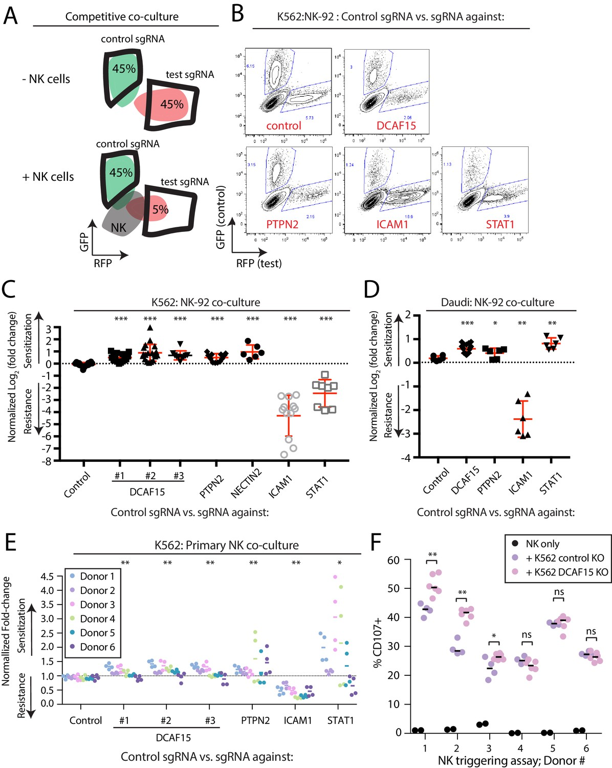 Systematic identification of cancer cell vulnerabilities to