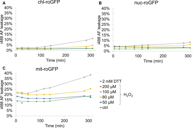 Light-dependent single-cell heterogeneity in the chloroplast