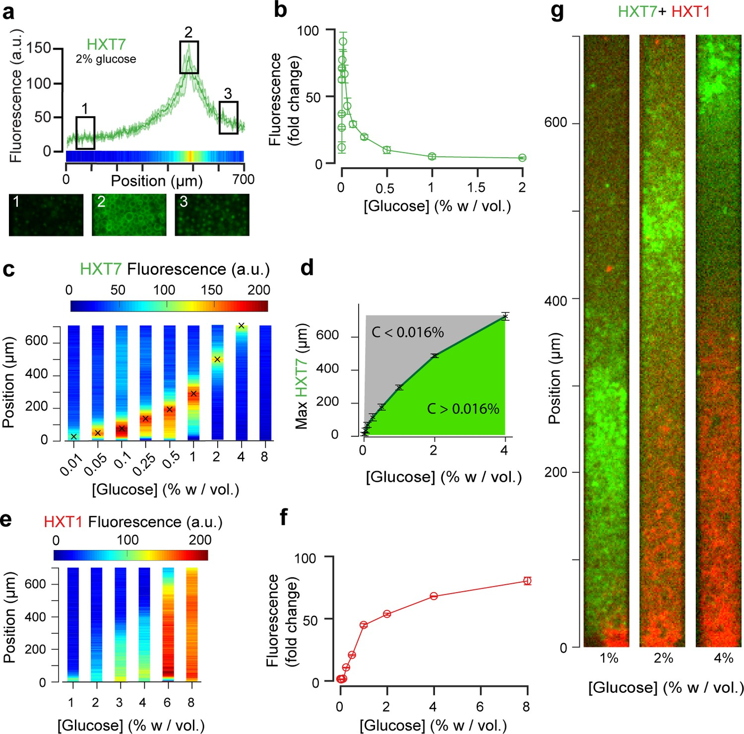 A microfluidic device for inferring metabolic landscapes in yeast