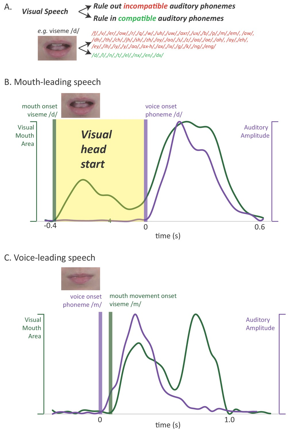 The visual speech head start improves perception and reduces