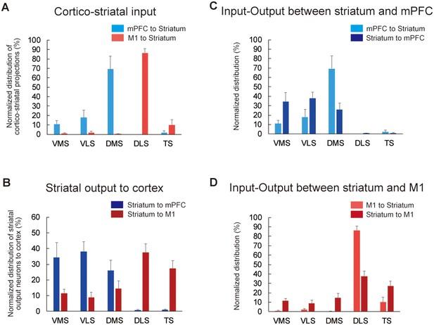 An open cortico-basal ganglia loop allows limbic control