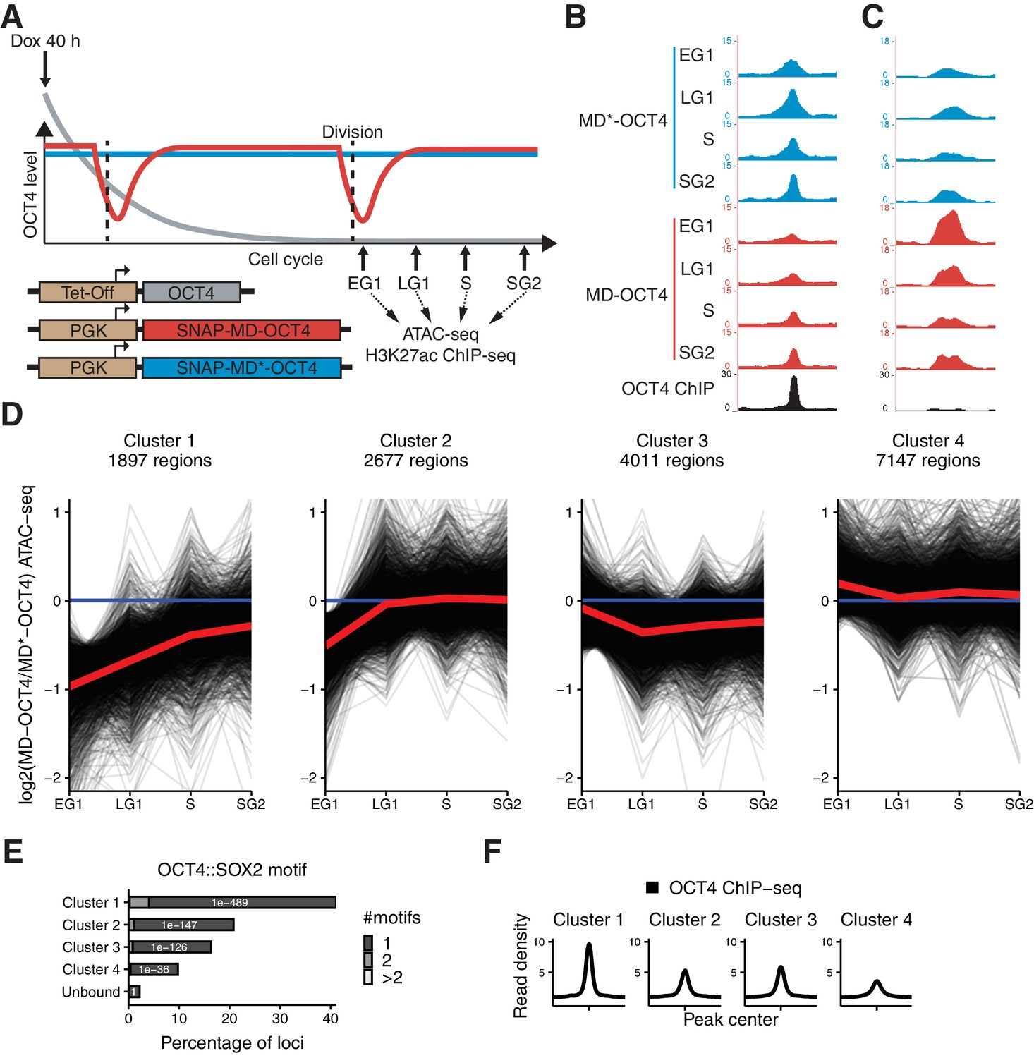 Figures And Data In Dynamic Regulation Of Chromatin