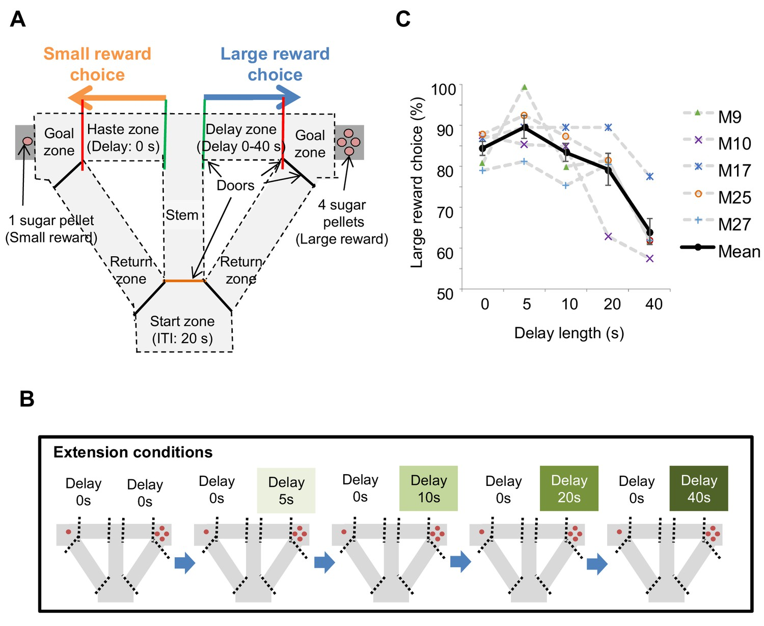 The Hippocampus Encodes Delay And Value Information During Delay Discounting Decision Making Elife