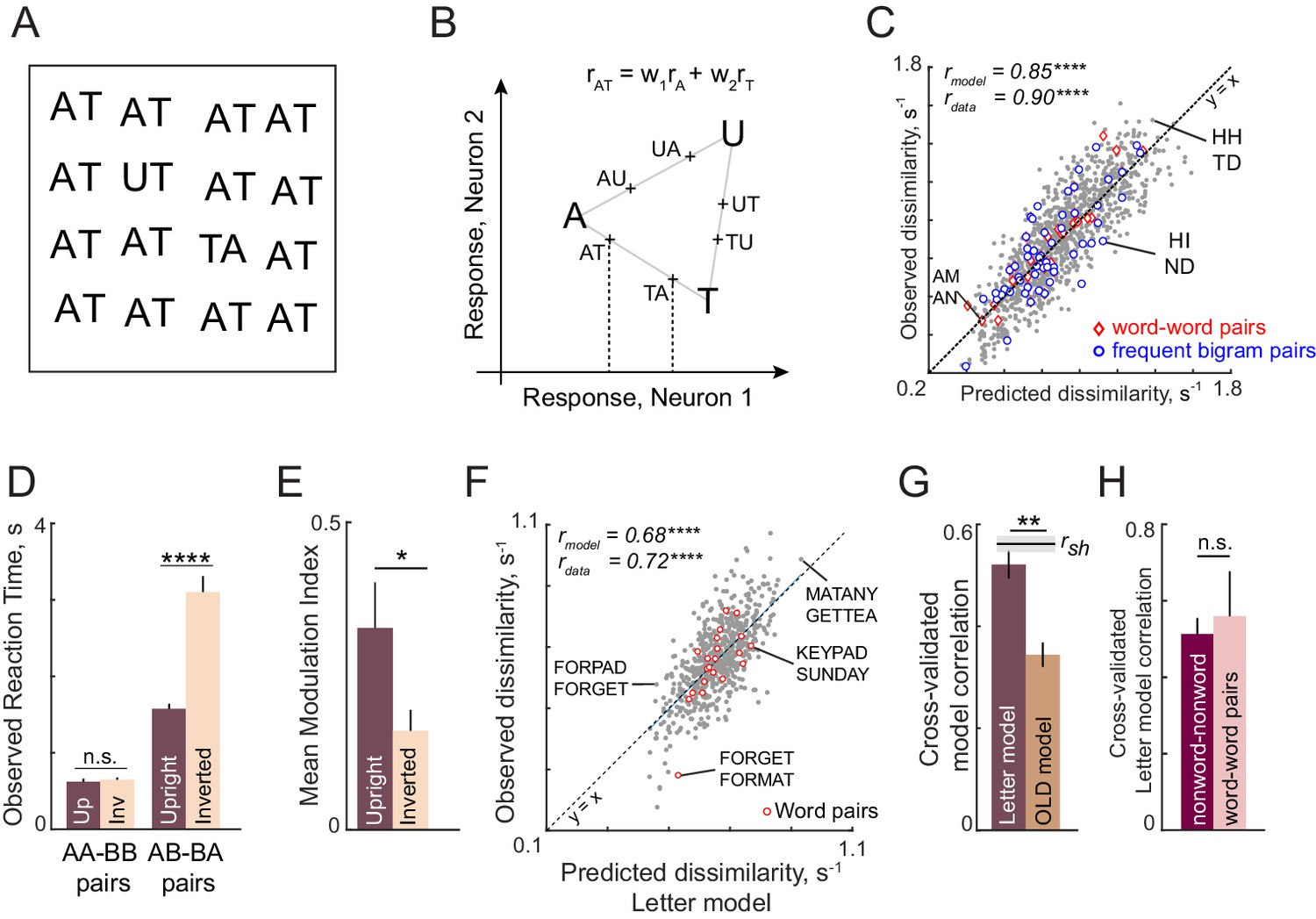 A compositional neural code in high-level visual cortex can explain jumbled  word reading | eLife