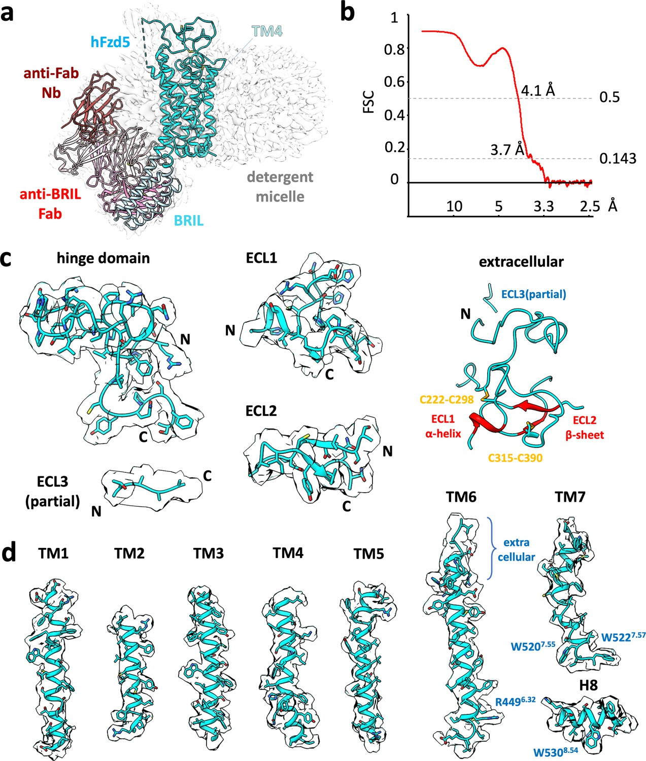 Figures and data in Cryo-EM structures of S-OPA1 reveal